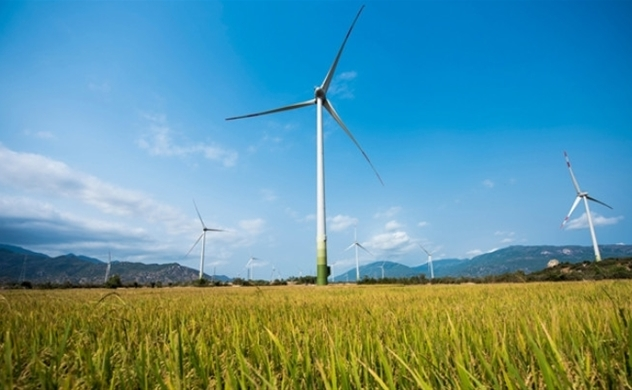 Vietnam to stop licensing of wind power plants