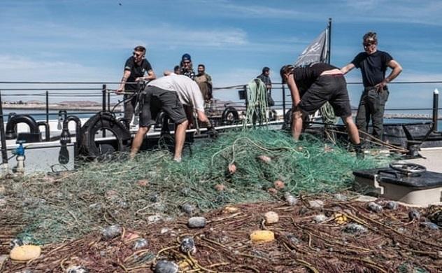 """Thiết bị thủy sản """"xanh"""" cho các vấn đề nhựa đại dương"""