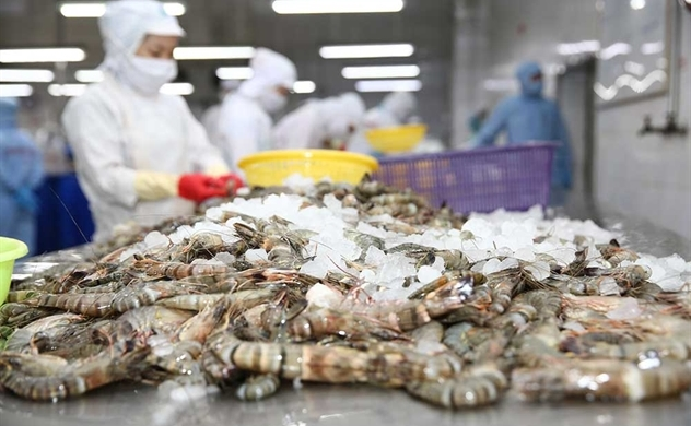 US accuses Vietnam's shrimp producer evading antidumping duty payments