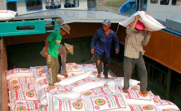 Gạo Việt tăng tốc trên thị trường xuất khẩu lẫn nội địa