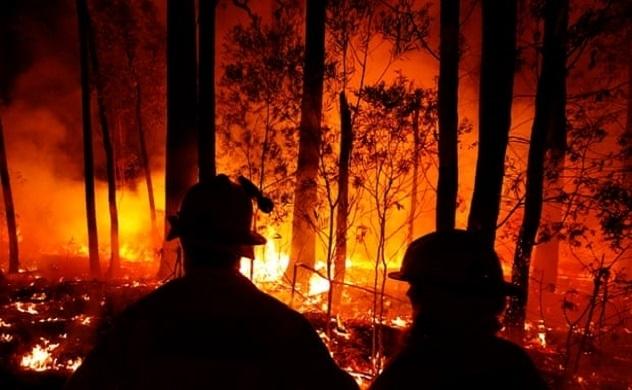 Tác hại của cháy rừng ở Úc đối với biến đổi khí hậu do con người gây ra