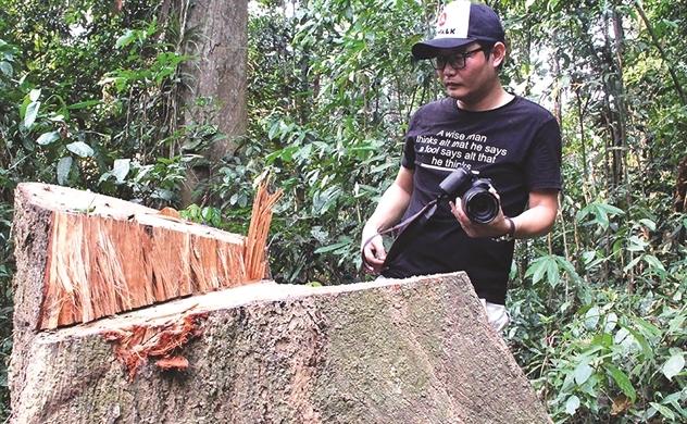 Đừng biến rừng phòng hộ thành hàng hóa