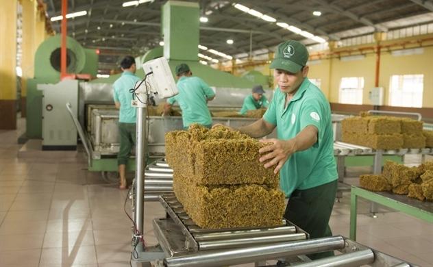 Tập đoàn Công nghiệp Cao su Việt Nam chốt phương án bán toàn bộ cổ phiếu SIP