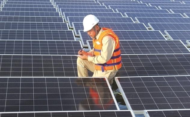 """""""Sức hút"""" của năng lượng tái tạo"""