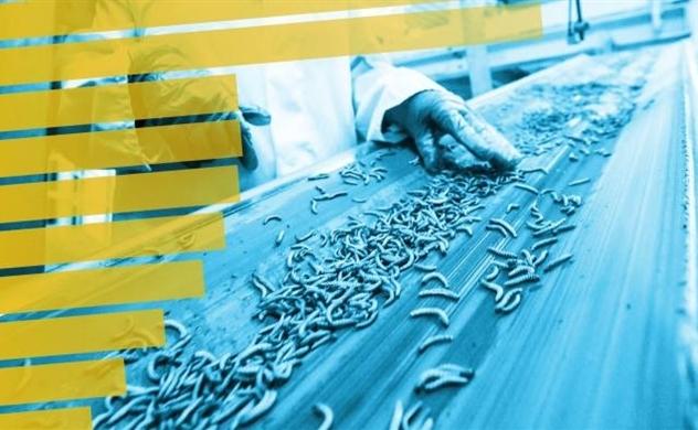 Tính bền vững trở thành ngành kinh doanh tiềm năng