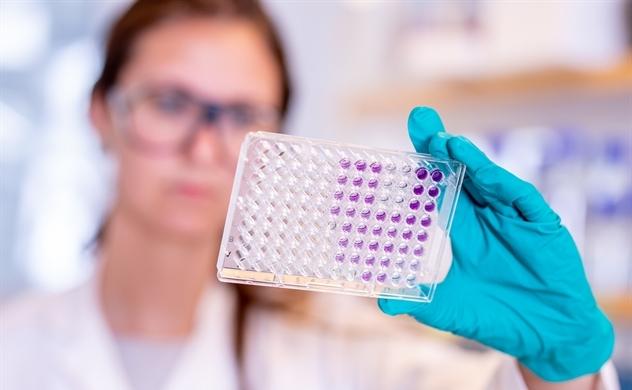 Vaccine COVID-19 AZD1222 sẵn sàng phân phối toàn cầu