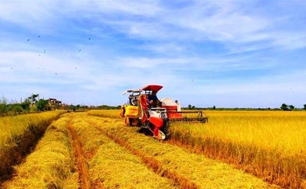 Vietnam's 2021 exports of farm produce projected at $44 bln