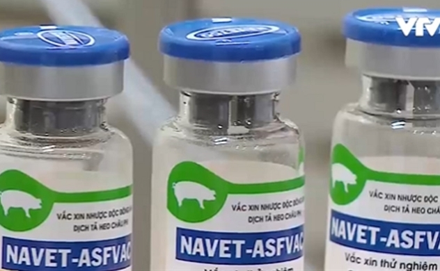 Vietnam to produce African swine fever vaccine in second quarter