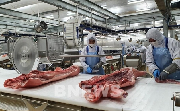 Russia's AVG Group to build $1.4 bln pig farm in Thanh Hoa province