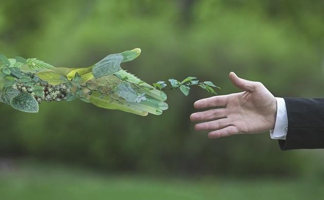 8 xu hướng bền vững 2021