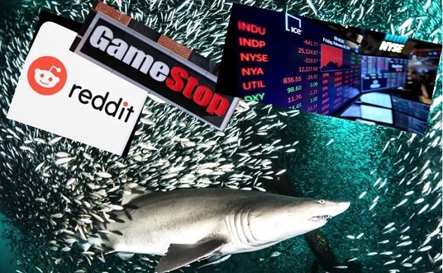 """Cuộc chiến chấn động phố Wall: """"Cá con"""" vs """"cá mập"""""""