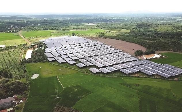 Băm đất nông nghiệp làm điện mặt trời