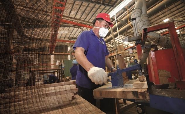 Việt Nam lập công xưởng gỗ thế giới
