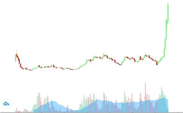 Thị giá cổ phiếu của một công ty dệt may đã tăng gấp 10 lần trong gần 1 năm