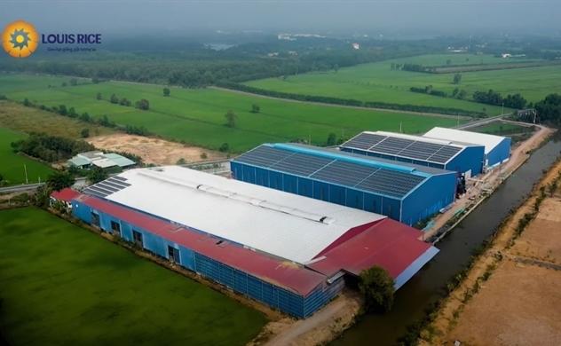 Một doanh nghiệp chuyên xuất khẩu gạo sẽ IPO trong năm 2021