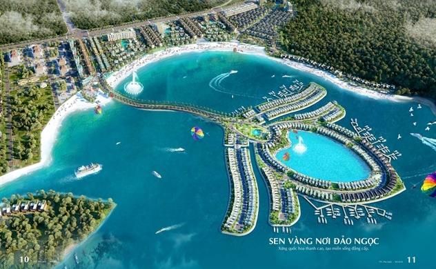 Sen vàng Selavia: Biểu tượng mới của đảo ngọc