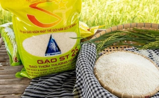 Doanh nghiệp Mỹ đăng ký thương hiệu: Tiếc cho gạo ST25?