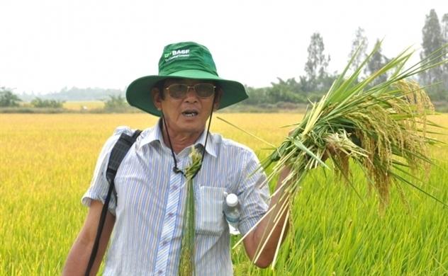 The Rice Trader cảnh báo tới các công ty Việt Nam tham gia cuộc thi 'Gạo ngon nhất thế giới'