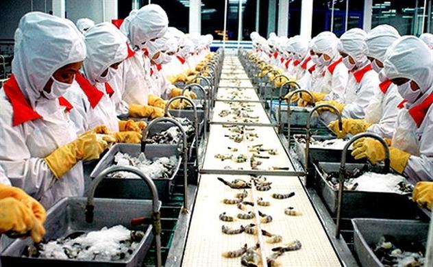 Minh Phú giảm tỷ trọng xuất tại thị trường Mỹ, chia cổ tức 2020 tỉ lệ 20%.