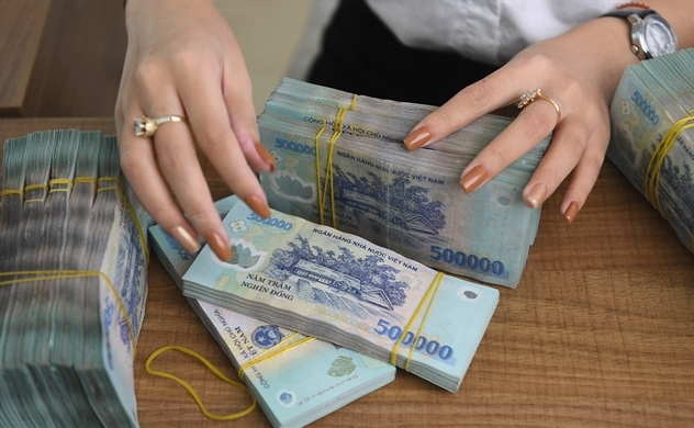 Vietnam's credit growth up 5.1 pct as of June 15 from end-2020