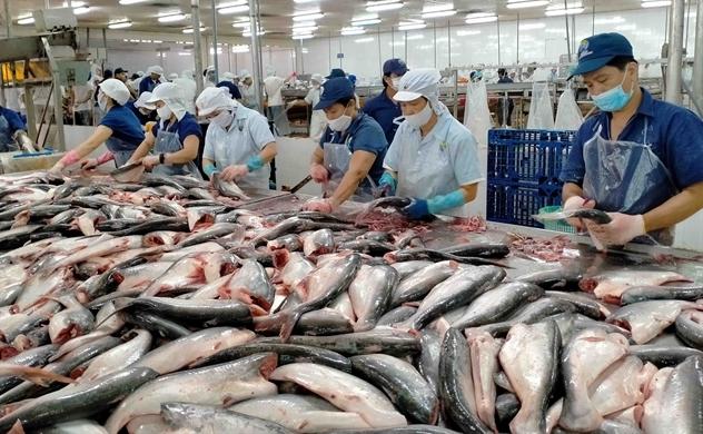 Thủy sản Vĩnh Hoàn, Nam Việt được áp thuế 0% khi xuất khẩu cá tra sang Mỹ