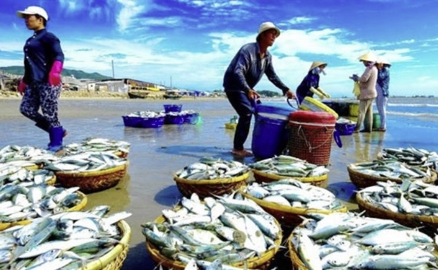 Vietnam's fishery exports hit $4.1 billion in the first half, up 13.6%