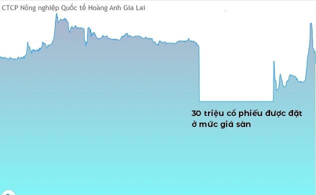 """Nhà đầu tư """"nhận trái đắng"""" vì HNG"""
