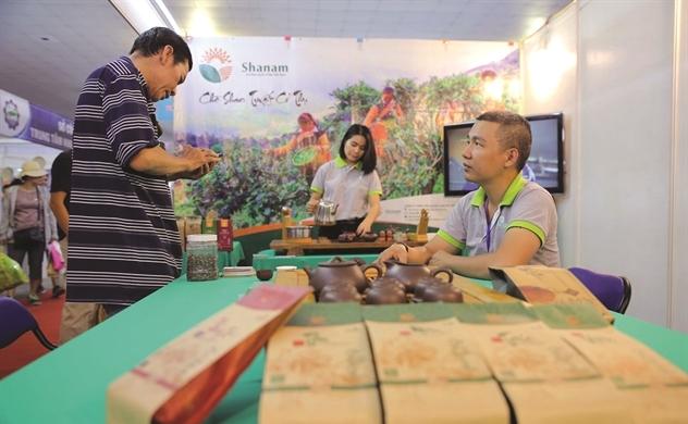 Đưa danh trà Việt đi khắp thế giới