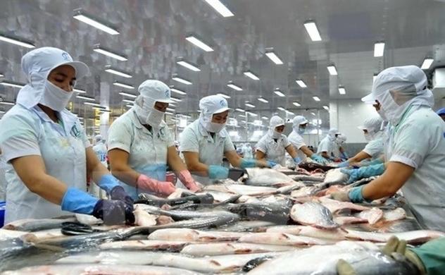 Xuất khẩu thủy sản 7 tháng đầu năm đạt gần 5 tỉ USD