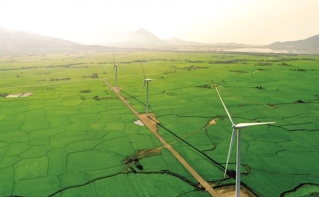 Tiền xanh, môi trường xanh