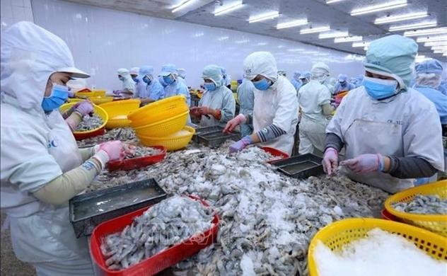 C.P Việt Nam sở hữu gần 17% vốn Thực phẩm Sao Ta